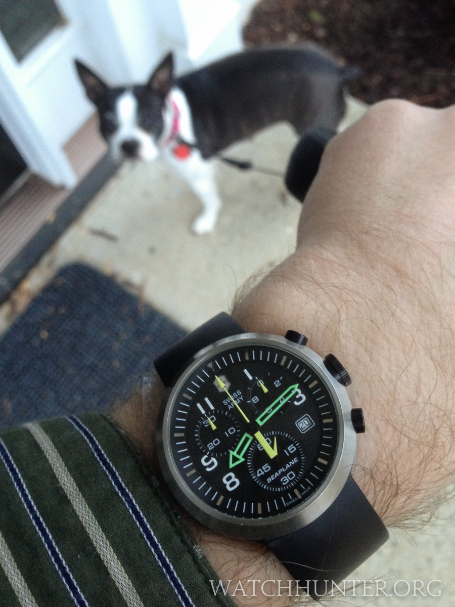 The SeaPlane Chronograph is an old friend of mine... just like Zoey in the background